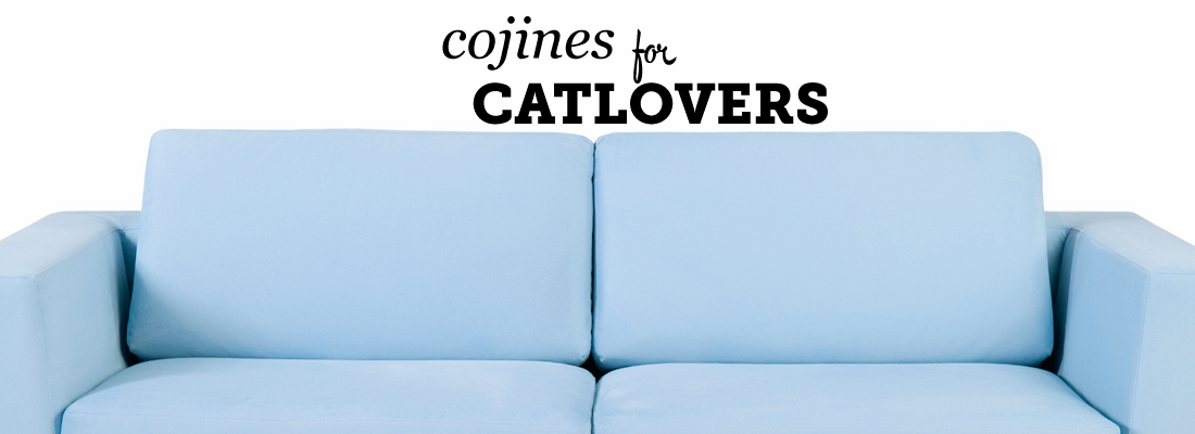 cojines catlovers